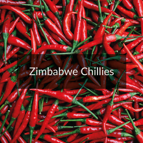 Zimbabwe Chillies